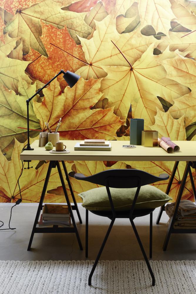 autumn leaf wallpaper geometric pen pots books and trestle desk
