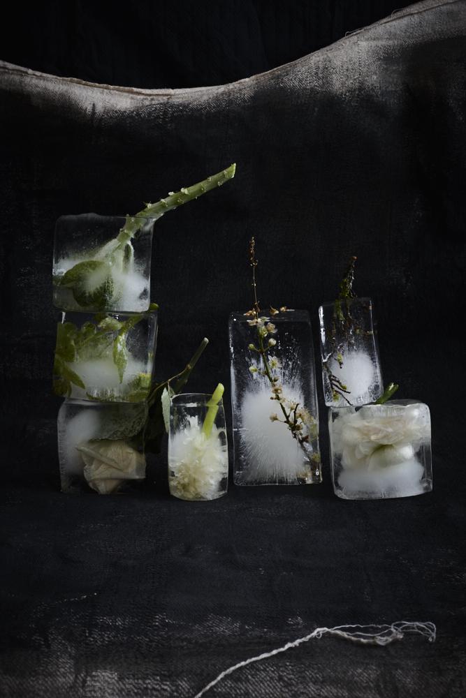 Ice Ice Baby1866