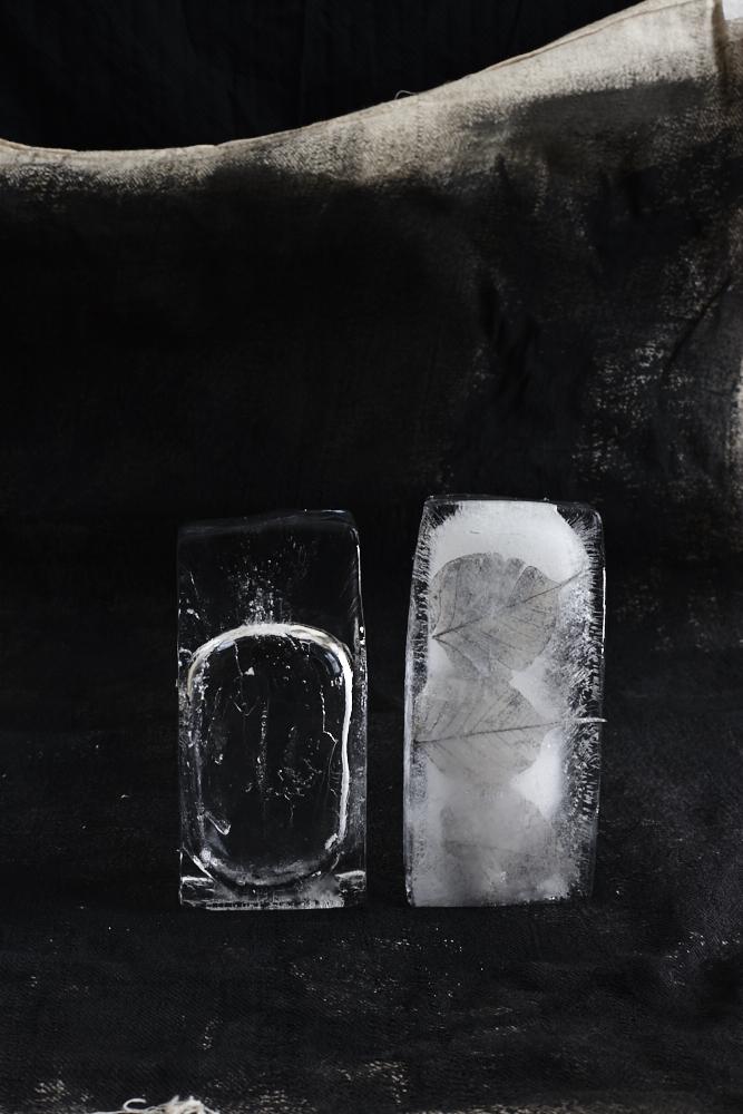 Ice Ice Baby1876